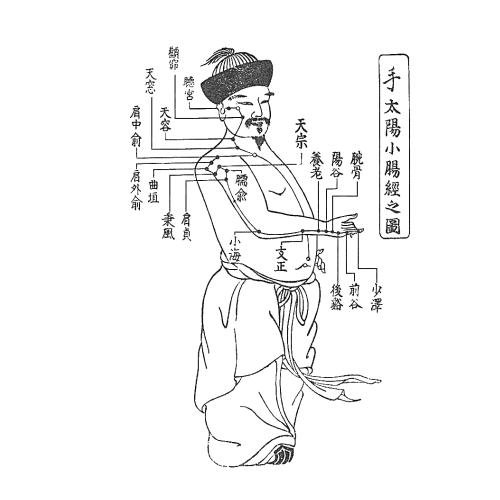 手の太陽小腸経の図