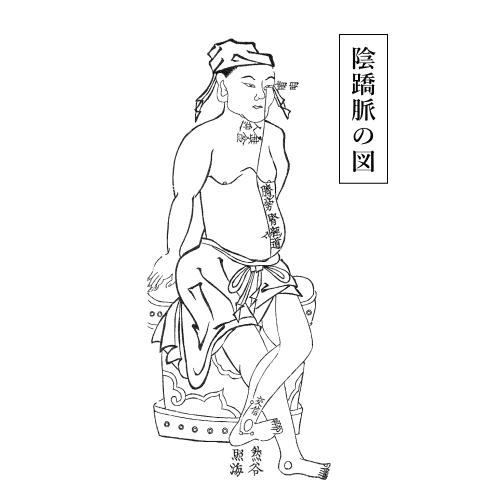 陰蹻脈の図