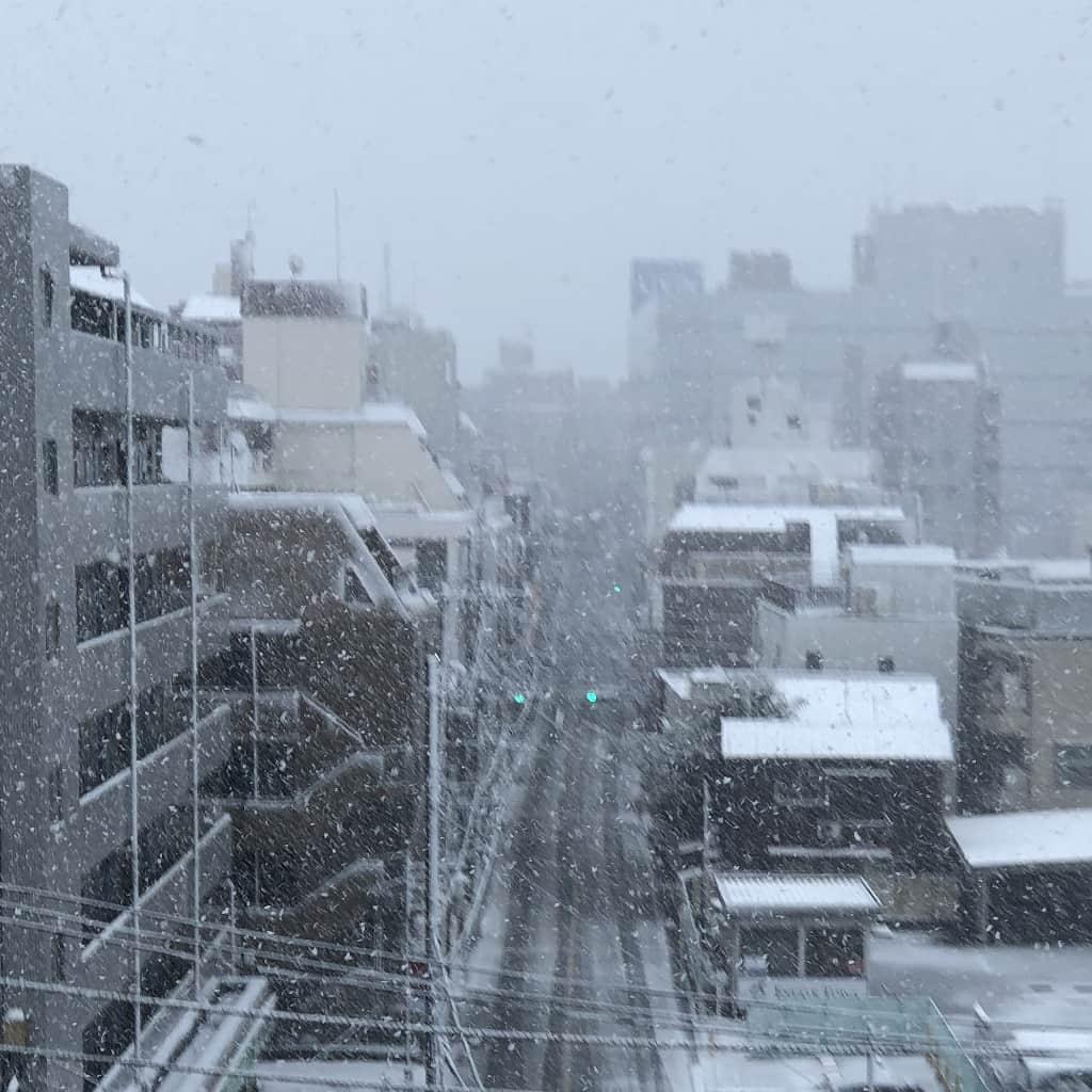 3/29の雪の降る町